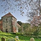 Church of St.Mary, Bepton, West Sussex by dgbimages
