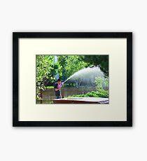 Summer Soaking Framed Print