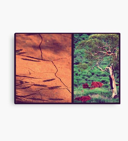 Tree & Dirt Canvas Print