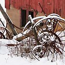 Rusty Wheels II by Michael  Dreese