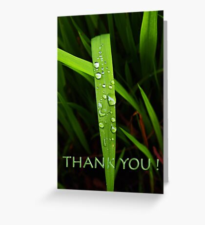 simple grassblade thank you Greeting Card