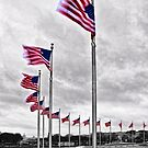 American Flags in Washington,DC by KellyHeaton