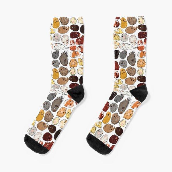 Guinea Pig Gradient Socks