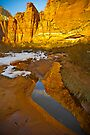 Zion Canyon Near Big Bend by photosbyflood