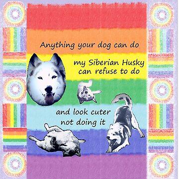 Anything your husky can do w/rainbow design by HuskyMama