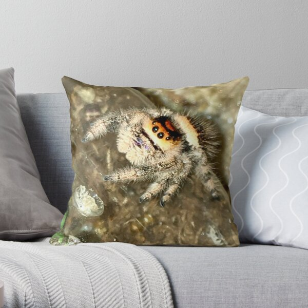 Jumping spiders Throw Pillow