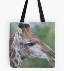 Young Male Giraffe Tote Bag