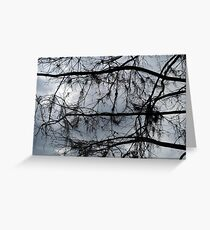 Bare Branches - December in Bayou George, FL Greeting Card