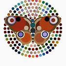 New Beginnings (Rainbow Butterfly) by BigFatArts