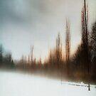 Blue Fog I by Mary Ann Reilly