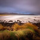 Cloudy Bay Beach by Mike Calder