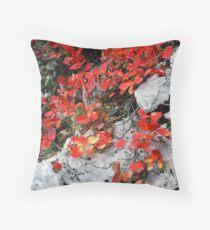 Plitvice Lakes - Croatia Throw Pillow