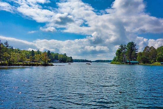 Fun in the Sun on Bay Lake  by Robert Meyers-Lussier