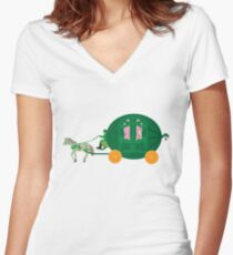 Watermelon Ball Women's Fitted V-Neck T-Shirt