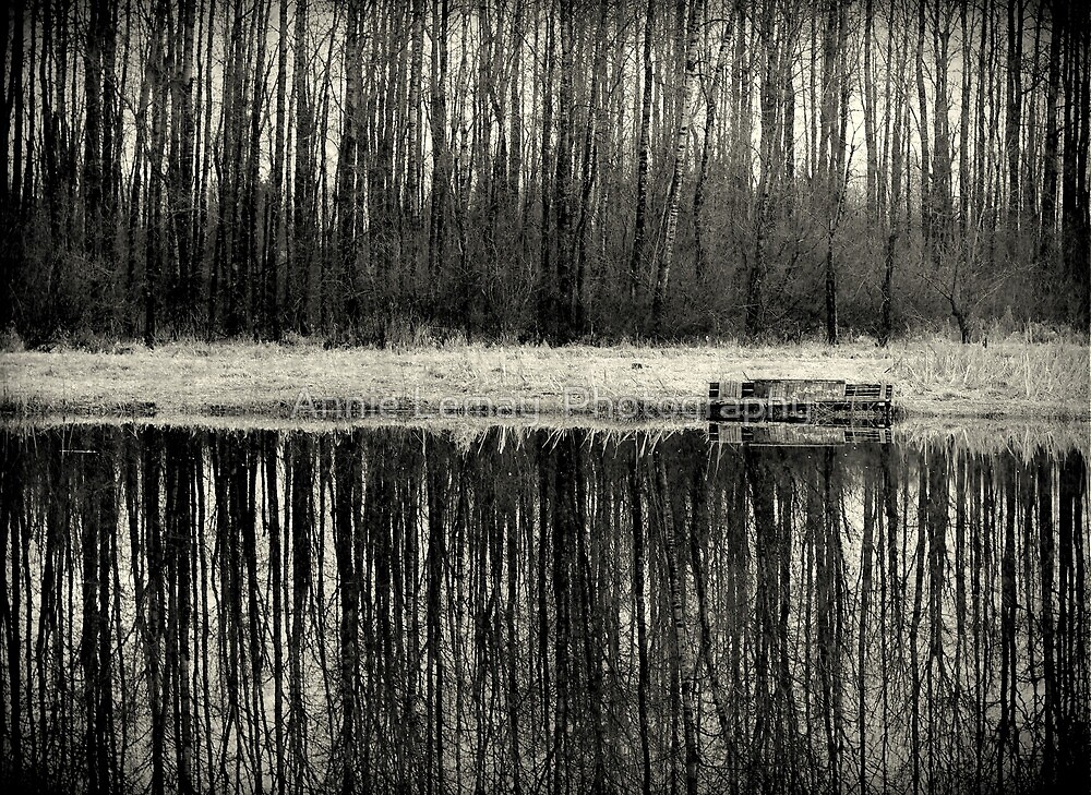 Isolation in BW by Annie Lemay  Photography