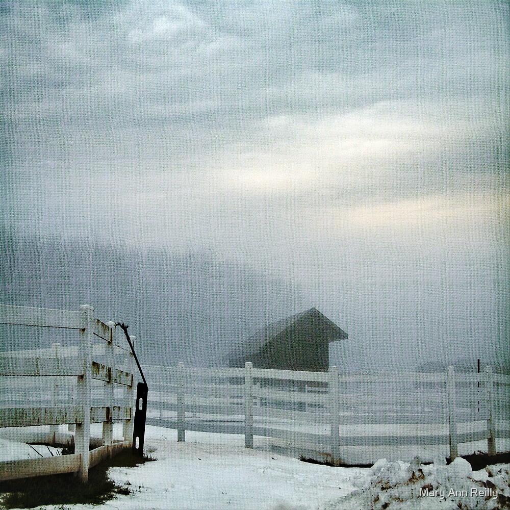 Blue Fog V by Mary Ann Reilly