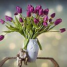 Springtime Dreams by Lynne Morris