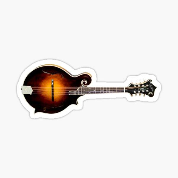 Apitius Vanguard Model Mandolin Sticker
