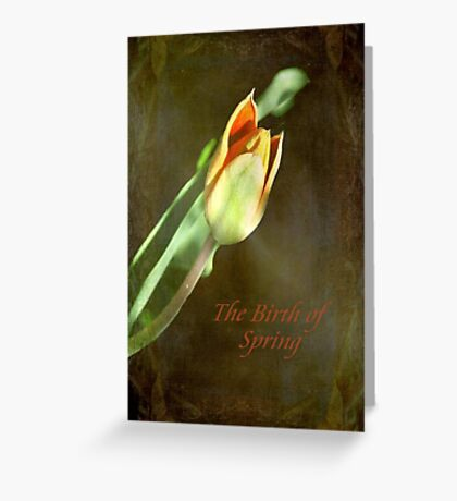 A New Spring © Greeting Card