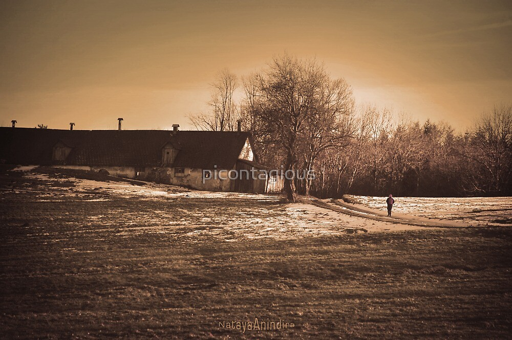 Last Winter Walk. Version 2 by picontagious