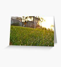 Grassy Mattress Greeting Card