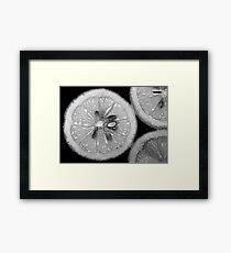 Lemon Texture Framed Print
