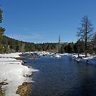 The Little Truckee River by Patty Boyte