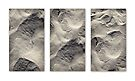 Beach trek triptych  by Duncan Waldron