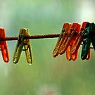 rain on our parade by lensbaby