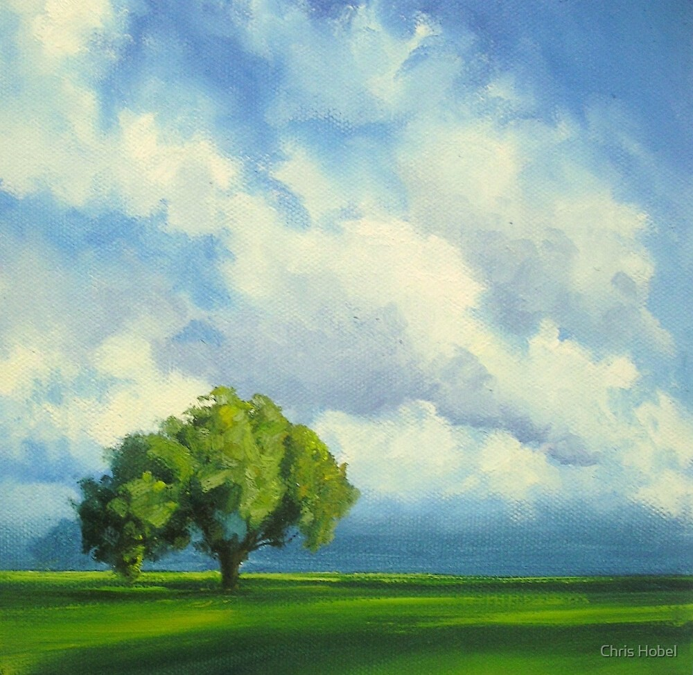 a simple tree with cloudy sky by chris hobel
