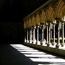 Shadows in the Cloister.. by eithnemythen