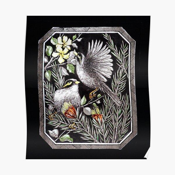 Noisy Mynah Birds & Thorny Mountain Devils Poster