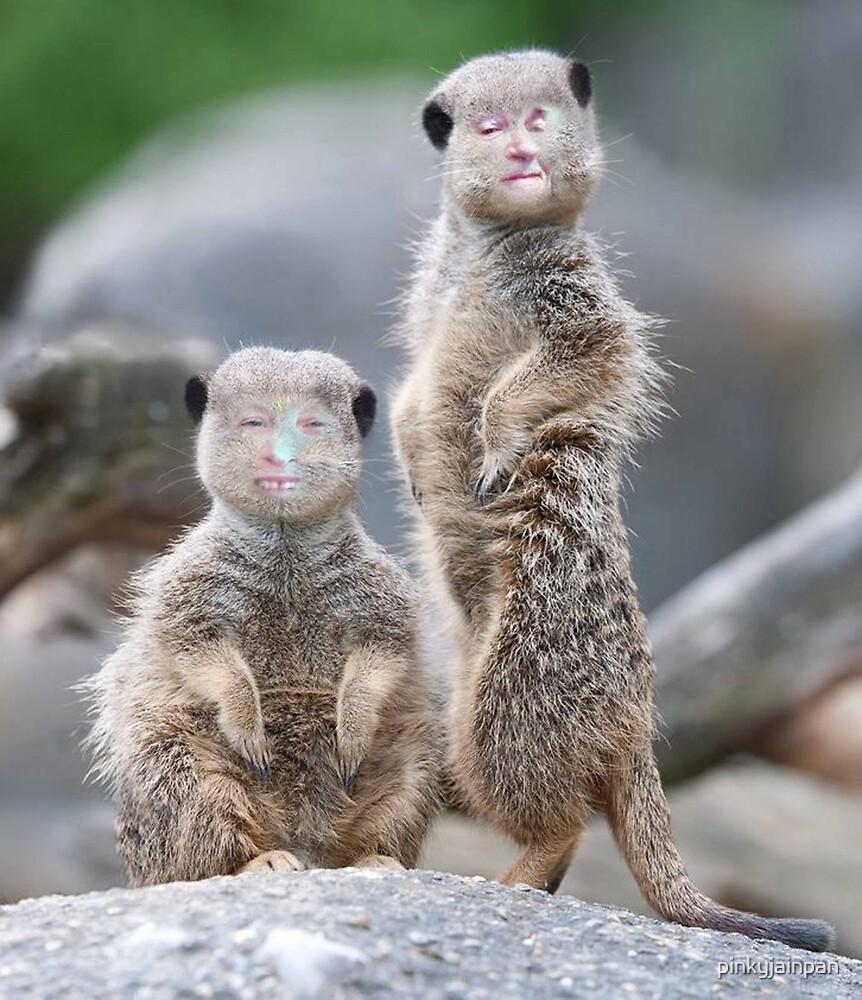 The Meerkats by pinkyjainpan