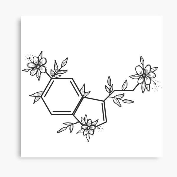 Serotonin Sticker Canvas Print