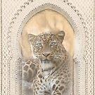 Morocco Leopard  by MarleyArt123