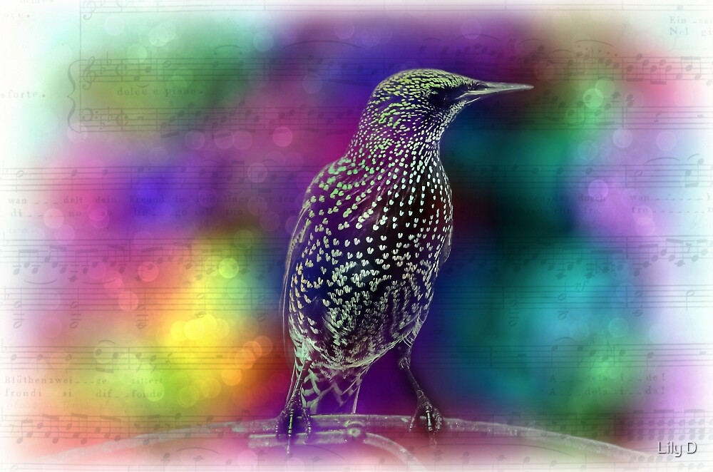 Colorful abstract bird and music notes. by Art Dream Studio