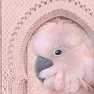 Pink Cockatoo 2 by MarleyArt123