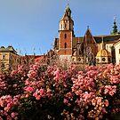 Fairytale Krakow by opheliaautumn
