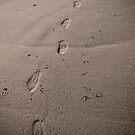 Walking on the moon by NicoleBPhotos