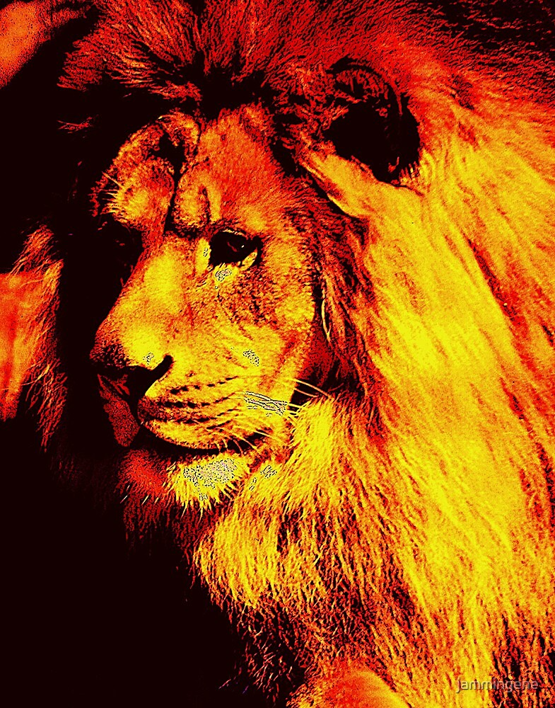 The Golden King..Fight With Blood..Fight With Steel..Die With Honor...Never Yield by jammingene