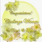 PW WINNER Banner Challenge by plunder