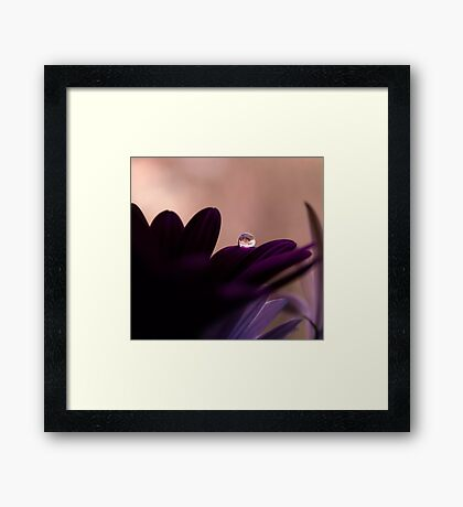 catching rain Framed Print