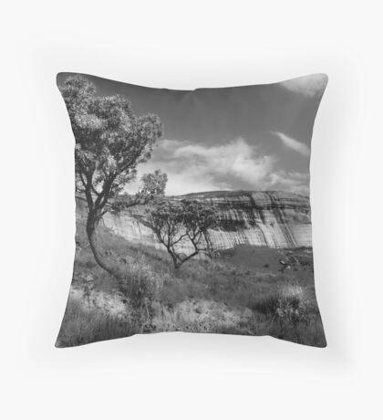 Sandstone Cliffs, Golden Gate, South Africa Throw Pillow