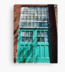 Turquoise Canvas Print