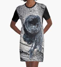 Marmoset Graphic T-Shirt Dress