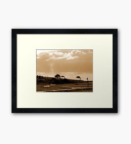 The Wind went Thataway Framed Print
