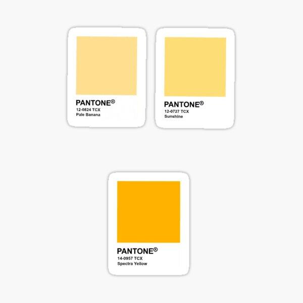 yellow pantone paint samples  Sticker