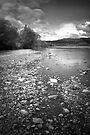 Hutt River  by Christine Wilson