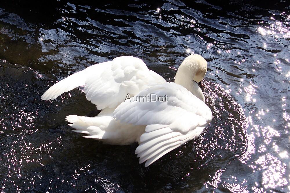 Angel Wings by AuntDot