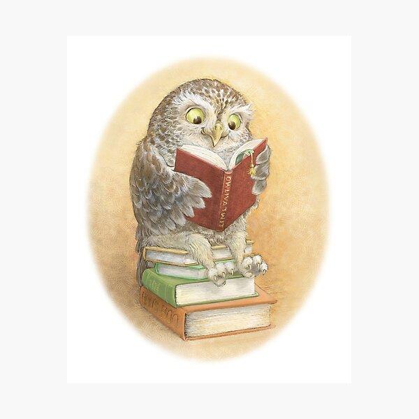 Book Owl Photographic Print